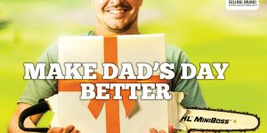 stihl fathers day specials
