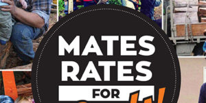 Stihl Mates Rates Catalog - Fathers Day 2017-1