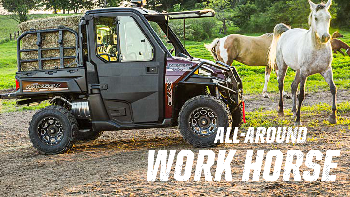 all-around-work-horse