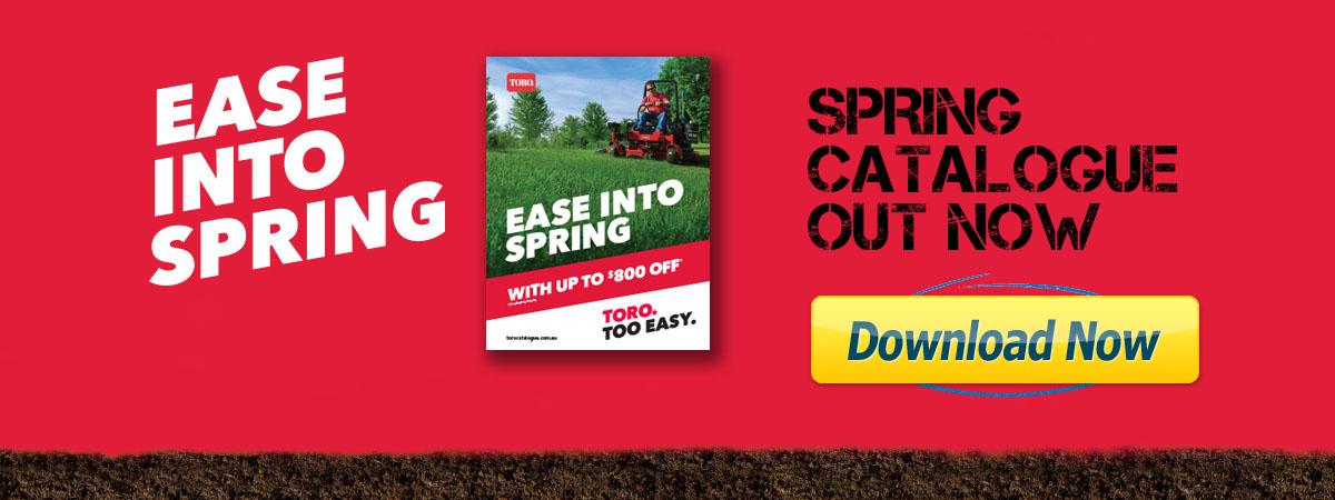 Ease Into Spring